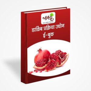 Pomegranate Processing (डाळिंब प्रक्रिया उद्योग )