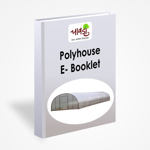 Poly House Ebooklet