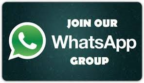 Business Updates On Whatsapp For Free