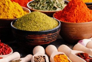 spice manufacturing business