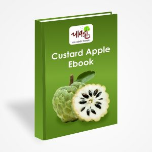 Custard Apple Processing Ebook