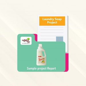 Laundry Soap Sample Project Report