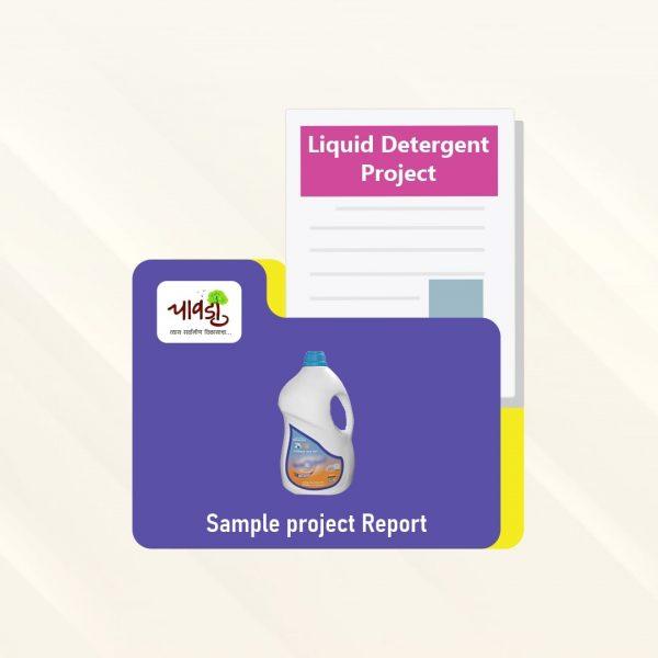 Liquid Detergent Sample Project Report