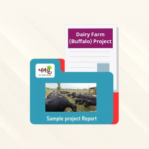 Dairy Farm (Buffalo) Sample Project Report