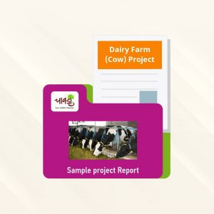 Dairy Farm (Cow) Sample Project Report