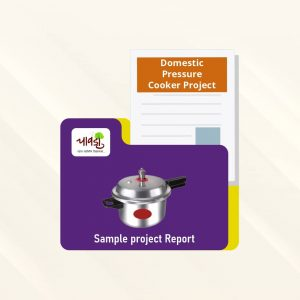 Domestic Pressure Cooker Sample Project Report