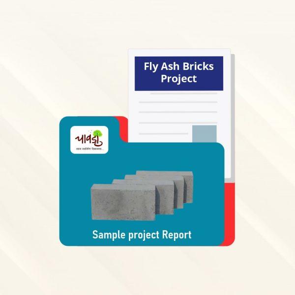 FLY ASH BRICKS SPR