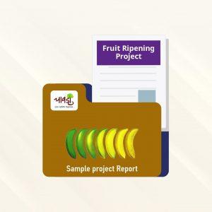 Fruit Ripening(Banana Ripening)SPR