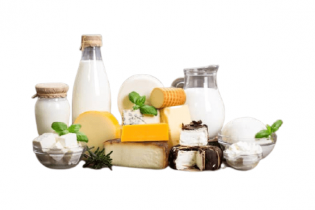 Milk Based Food Products Business